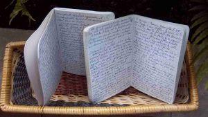 Carnet manuscrits du Fleuve-trotteur écrits le long du Rhône