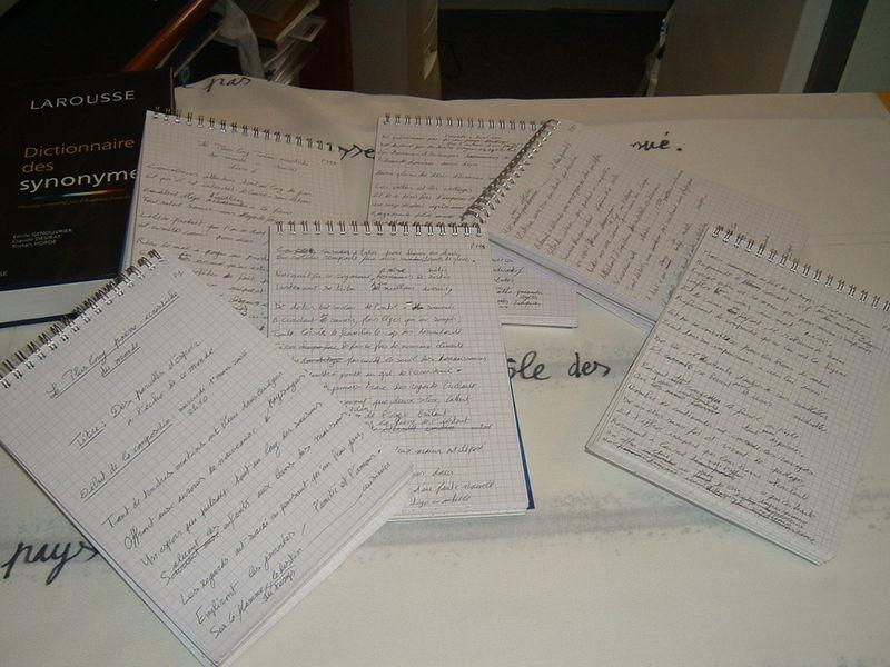 les carnets manuscrits du poème d'un kilomètre de long, de Patrick Huet, mini photo