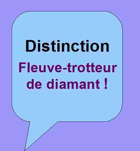 Distinction honorifique Fleuve-trotteur de diamant pour soutenir les activités littéraires de Patrick Huet.