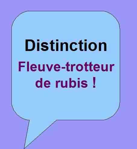 Distinction honorifique Fleuve-trotteur de rubis pour soutenir les activités littéraires de Patrick Huet.
