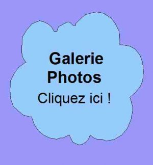 4- Galeries photo
