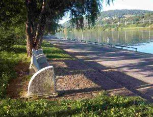 La Saône à Neuville sur Saône Photo de Patrick Huet.