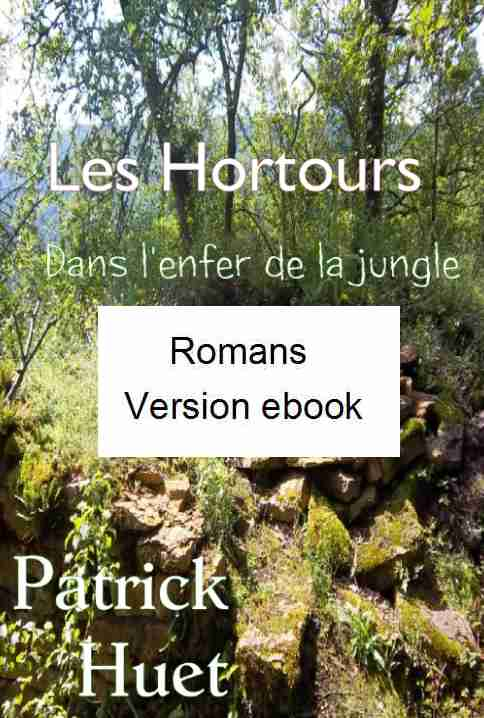 Version numérique des romans de Patrick Huet