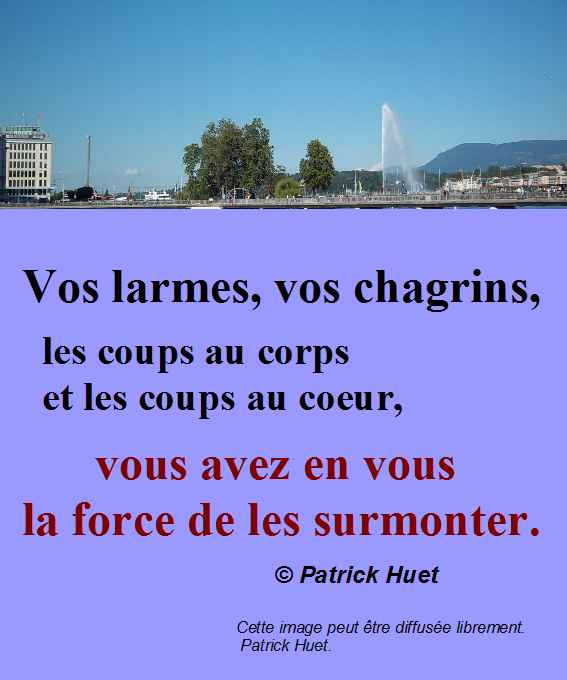 La force de les surmonter - Patrick Huet.
