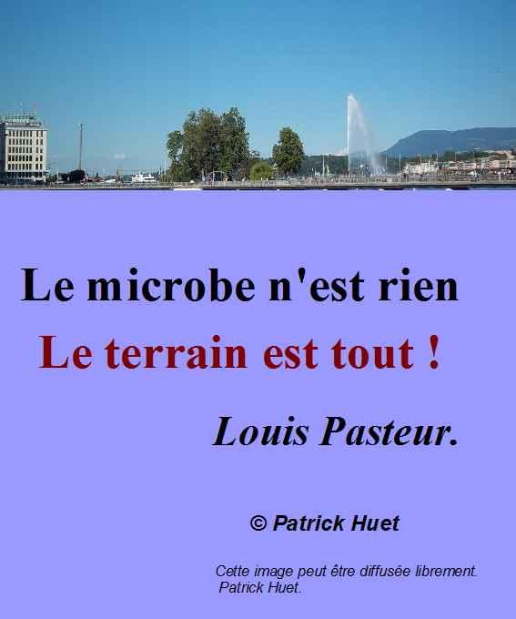 Le microbe n'est rien - le terrain est tout - Louis Pasteur