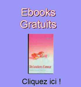 Accès aux livres numériques gratuits de Patrick Huet.
