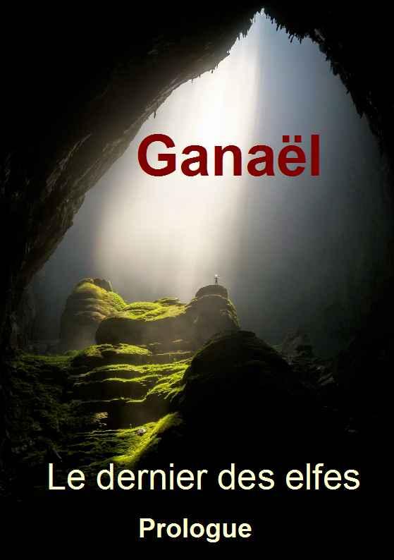 Ganaël le dernier des elfes. Le prologue.