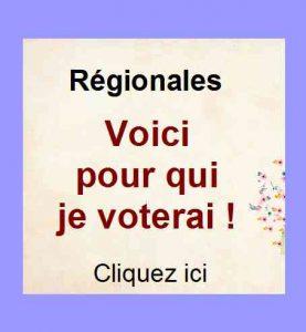 Elections régionales : voici pour qui je voterai !
