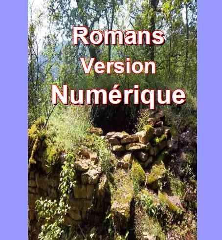 Liste des Romans numériques de Patrick Huet